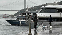 Arnavutköy'de denizanaları sahil şeridini kapladı