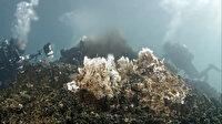 Su altı fotoğrafçıları ve filmcileri 'Van Gölü'nün peribacaları'nı görüntüledi