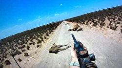 Avustralya'da 5 bin deve katledildi