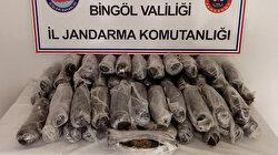 Bingöl'de mağaraya gizlenen 50 kilo esrar bulundu