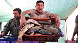 Denizi olmayan Manisa'dan balık ihraç ediyorlar: Yurt dışında alıcı buluyor