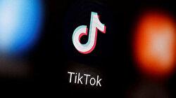 Mnuchin says China's TikTok under federal CFIUS review