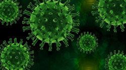 ABD'de ikinci kez koronavirüse yakalanan gençteki virüsün genetik dizilimi farklı çıktı