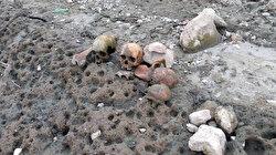 Çanakkale'de korkutan görüntü: Gölet havzasında 4 kafatası ve kemikler bulundu