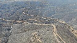 Manavgat'ta orman yangınını başlatan 16 yaşındaki zanlı tutuklandı