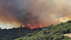 Çanakkale'de orman yangını: Aynı bölge son bir ayda 10'uncu kez alevlere teslim