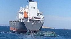 Yük gemisi balık havuzuna girdi: Bir milyon balık denize kaçtı