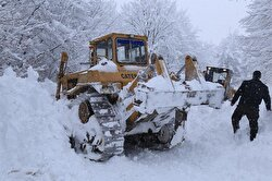 The snow has caused havoc on Turkey's roads, ferries and airports.