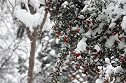 Very few parts of Turkey are not experiencing below-freezing temperatures.