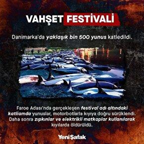 Vahşet festivali