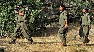 Şırnak'ta PKK'lı 3 terörist daha teslim oldu