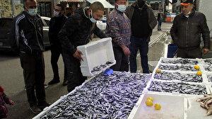 Sinop'ta hamsi bolluğu: Vatandaş da, balıkçı da memnun