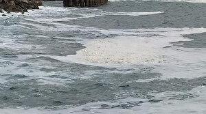 Hatay sahil şeridinde görülen sıvının müsilaj olmadığı belirlendi