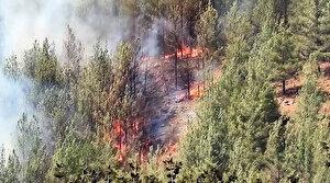 Kayseri'de orman yangını: Havadan karadan müdahale ediliyor