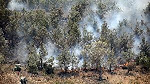 İstanbul ve 11 ilde ormanlık alanlara giriş yasaklandı