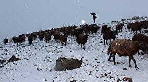 Doğu Anadolu'da şaşırtan görüntü: Kar ve tipiye yakalandılar