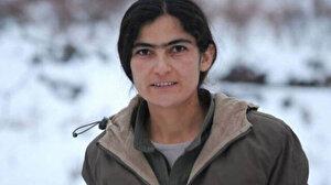 TSK ve MİT'ten nokta atışı: Mahmur kampına giden PKK'nın sözde yöneticisi Taybet Bilen öldürüldü