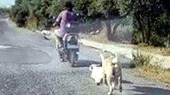 Cruel man ties poor dog behind electric bike, dragging animal for miles
