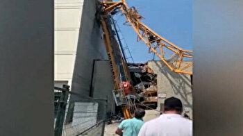 Devastating crane collapse kills four in Canada