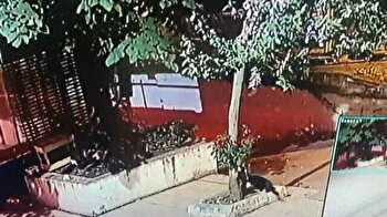 Heartless man brutally kicks stray cat to death in Istanbul