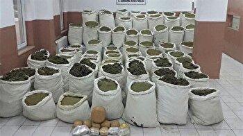 Over 7 tons of marijuana seized in Turkey's Diyarbakir