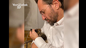 Turkish official spends quality time, talks with his adorable kitty on World Animal Day