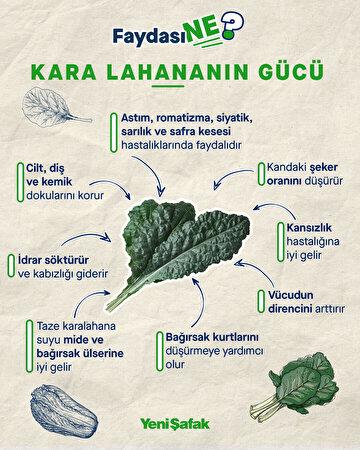 kara-lahananin-gucu