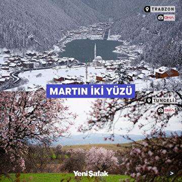 martin-iki-yuzu