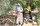 """Antalya'nın Serik ilçesinde yaşayan 119 yaşındaki Havva Çevik ve 101 yaşındaki kız kardeşi Cennet Karagöz'ün, yıllara meydan okuyan uzun yaşamları ilgi çekiyor.Serik ilçesi Gebiz mahallesinde ormanlık alandaki iki ayrı müstakil evde hayatlarını sürdüren kız kardeşler, asrı geride bırakan yaşlarına rağmen günlük ihtiyaçlarını kendileri karşılıyor.Yaşlarıyla şaşırtan kız kardeşlerden Havva Çevik'in 8 çocuğundan 6, Cennet Karagöz'ün ise 8 çocuğundan 22 torunu bulunuyor. Torunlarının torunlarını gören asırlık kız kardeşler, uzun yaşamlarında sağlıklı kalmalarının sırrının tarhana ve buğday çorbası ile bulgur aşı olduğunu söylüyor.Karagöz, gazetecilere yaptığı açıklamada, çobanlık yaptığını ve Toros Dağları'nın temiz havasında ömrünün geçtiğini anlattı.Hayatı boyunca önemli hastalık geçirmediğini belirten Karagöz, son yıllarda ayaklarındaki rahatsızlık nedeniyle yürümekte zorluk çekmeye başladığını kaydetti.Doğayı çok sevdiği için çocuklarının ısrarlarına rağmen evinden ayrılmadığını anlatan Karagöz, """"Çok sevdiğim eşimi 15 yıl önce kaybettim. Keşke yaşasaydı ve yanımda olsaydı. O öldükten sonra bir daha evlenmedim. Niye evleneyim? Allah kapatılan kapıyı devşirmesin. Eşimi çok severdim."""" diye konuştu."""