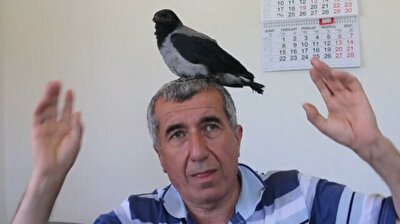 Compassionate Turkish family cares for crow chick fallen from nest