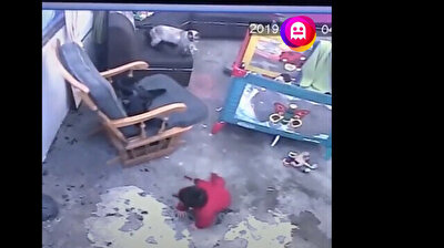 Cat prevents baby from rolling down stairs