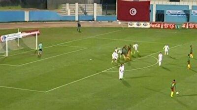 Aboubakar'dan Ibrahimovic golü