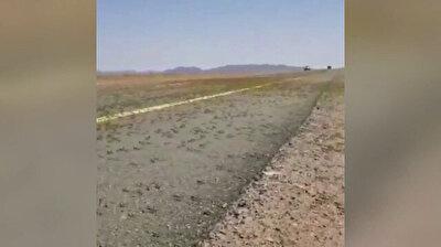 Iran battles worst locust plague in 40 years
