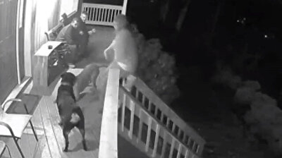 Dog pushes unlucky woman down the stairs of her front porch