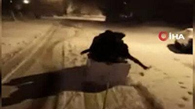 متعة التزلج على الثلوج بتركيا لا تحتاج إلى تعقيد.. شاهد