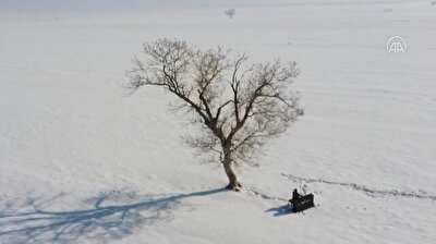 A nine-year-old visually disabled Turkish musician Bager Calisci, who is absolute pitch, made real his dream of playing the piano under a tree in the eastern Mus Plain of Turkey. After his father told about snowfall to his son the young musician had started to dream about playing a piano under a lonely tree in the snow covered area to observe how the piano sounds in the nature. His dream was realized by his father who took him to snowwhite Mus Plain with his piano.