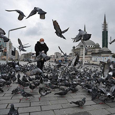 Meydanlar güvercinlere kaldı