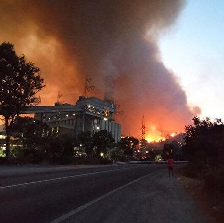 Milastaki yangın termik santrale sıçradı