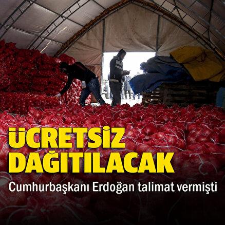 TMO, çiftçinin elinde kalan patates ve kuru soğanı maliyet fiyatına satın almaya başladı