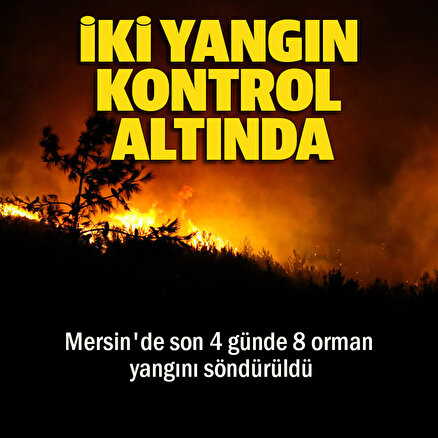 Pakdemirli açıkladı: Mersin Silifke'de çıkan 2 yangın kontrol altına alındı