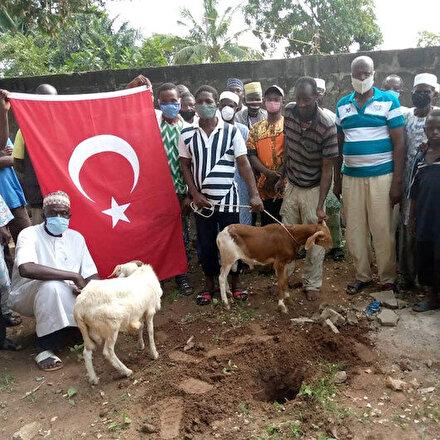 Togoda Ayasofyanın ibadete açılması kararıyla kurban kesildi