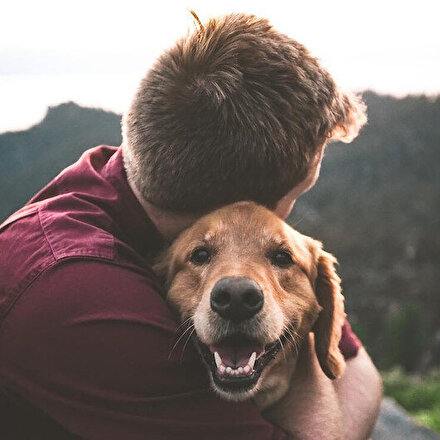 DNA araştırmaları insan ile köpek arasındaki dostluğunu kanıtladı
