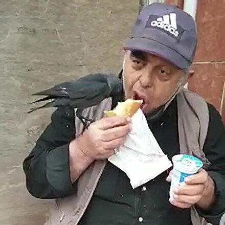 Döner yiyen adam koluna konan kargayla yemeğini paylaştı