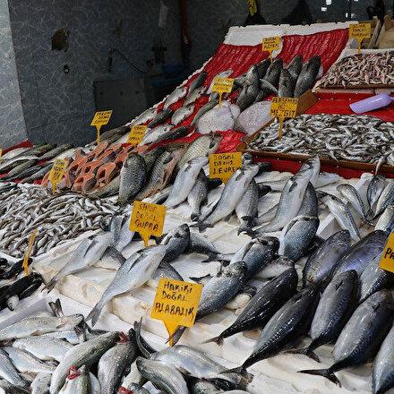 Palamutun yüzleri güldürdüğü av sezonu bitti: Tezgahları artık kültür balıkları süslüyor