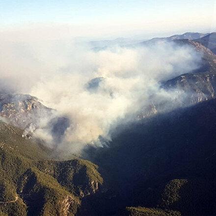 Muğla Köyceğizdeki yangın 5 ayrı noktada devam ediyor