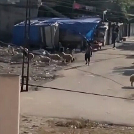 Adanada Cono aşireti arasında yaşanan silahlı çatışma anları kamerada