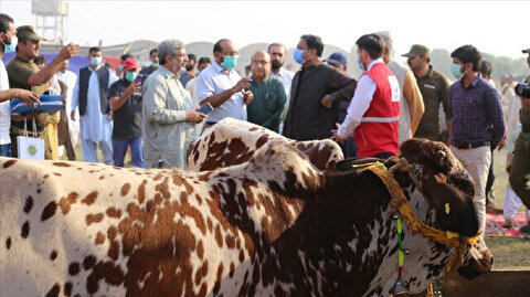 Turkish humanitarian aid groups to distribute meat in Pakistan on Muslim holiday