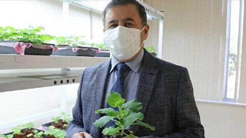 Turkish university develops COVID-19 vaccine candidate