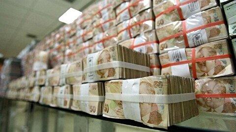 Lira rallies against dollar after referendum result
