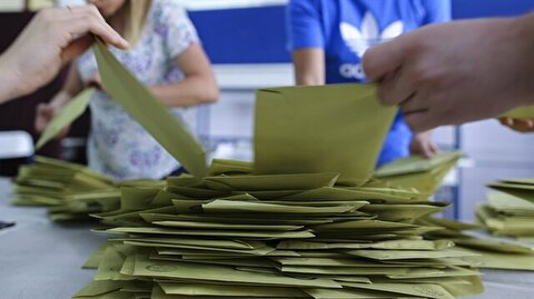 Parliamentary elections abroad and customs gates votes
